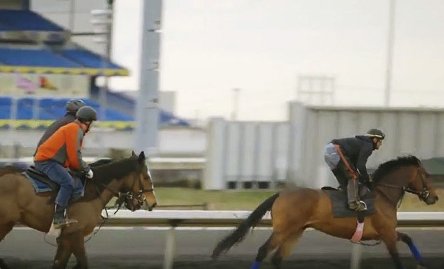 Two people racing horses