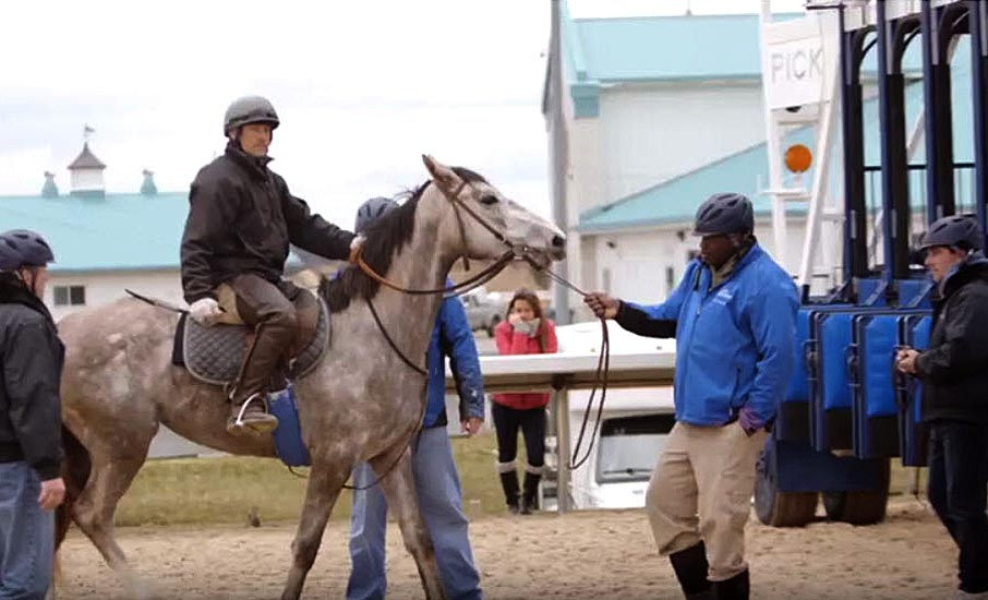 Assistant trainer riding horse