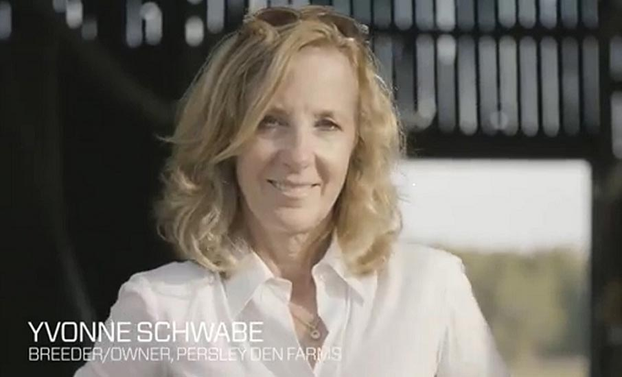 Yvonne Schwabe, Breeder, Owner, Persleyden Farms